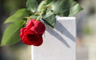 Rose på gravsten